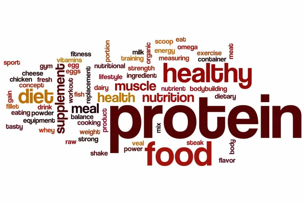 Proteins word cloud